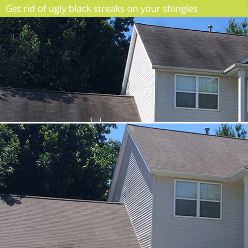 roof cleaning with soft wash removes black streaks from roof shingles