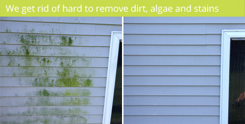 house washing and vinyl siding cleaning service removes algae from exterior